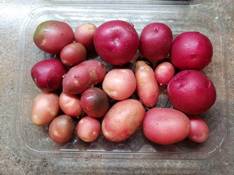 Pomme de terre grelots biologiques   (350 g ou 500 g)