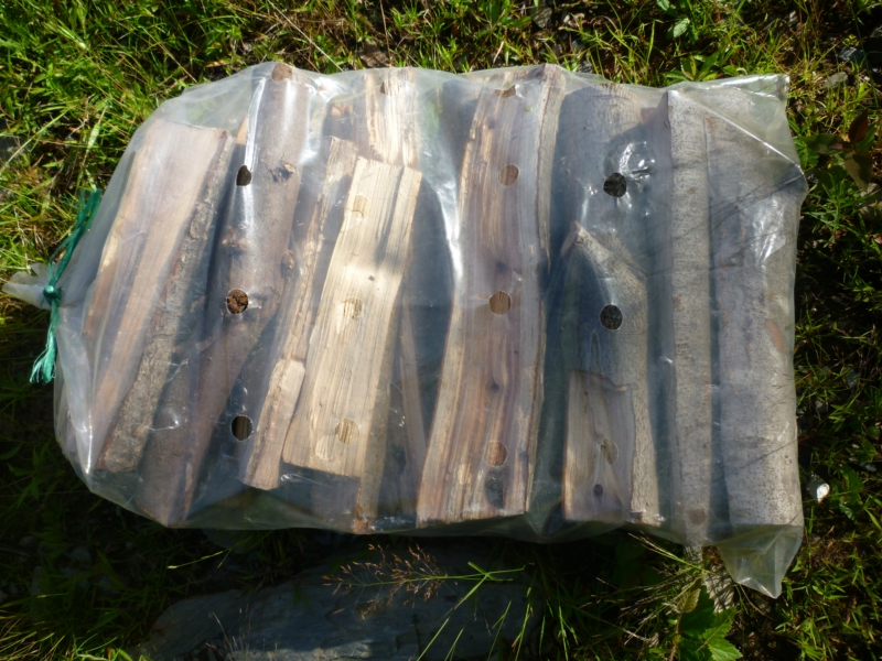 Ballots de bois d'allumage (16'' de long)